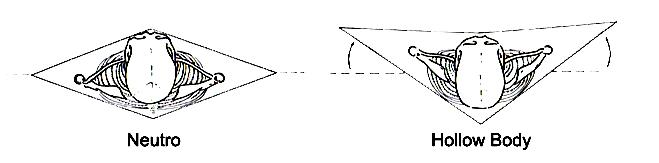 Neutro-hollow-body.jpg
